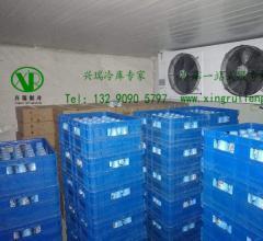 乳制品冷藏库